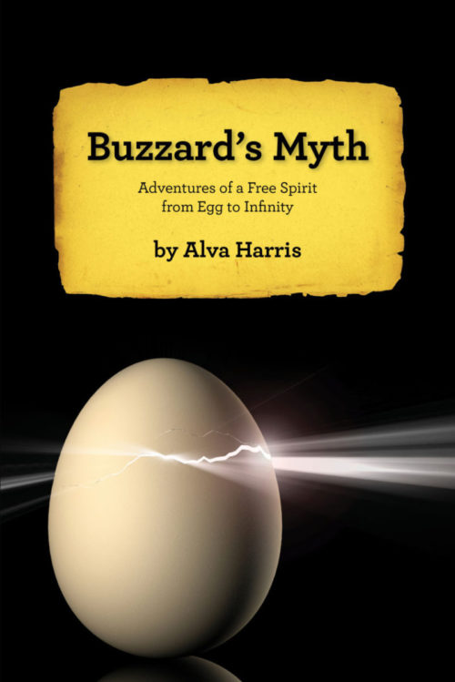 Buzzard's Myth (an adventurer's memoir)